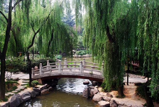 http://www.publicdomainpictures.net/view-image.php?image=25222&picture=arch-bridge