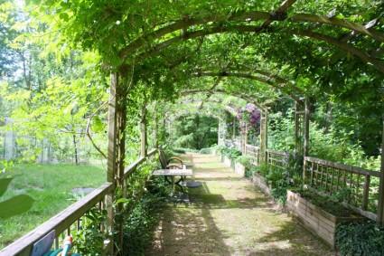 http://all-free-download.com/free-photos/pergola_shady_walk_garden_walk_214599.html