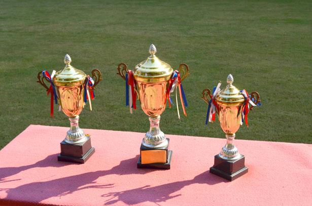 http://www.publicdomainpictures.net/view-image.php?image=29416&picture=trofeje
