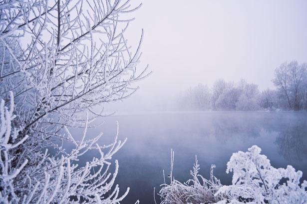 http://www.publicdomainpictures.net/view-image.php?image=18331&picture=winter-fog