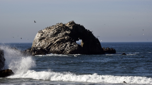 http://www.publicdomainpictures.net/view-image.php?image=142494&picture=one-heart-rock