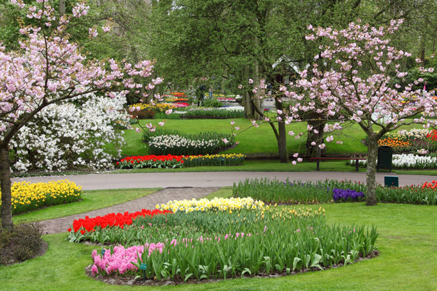 http://www.publicdomainpictures.net/view-image.php?image=6808&picture=spring-garden