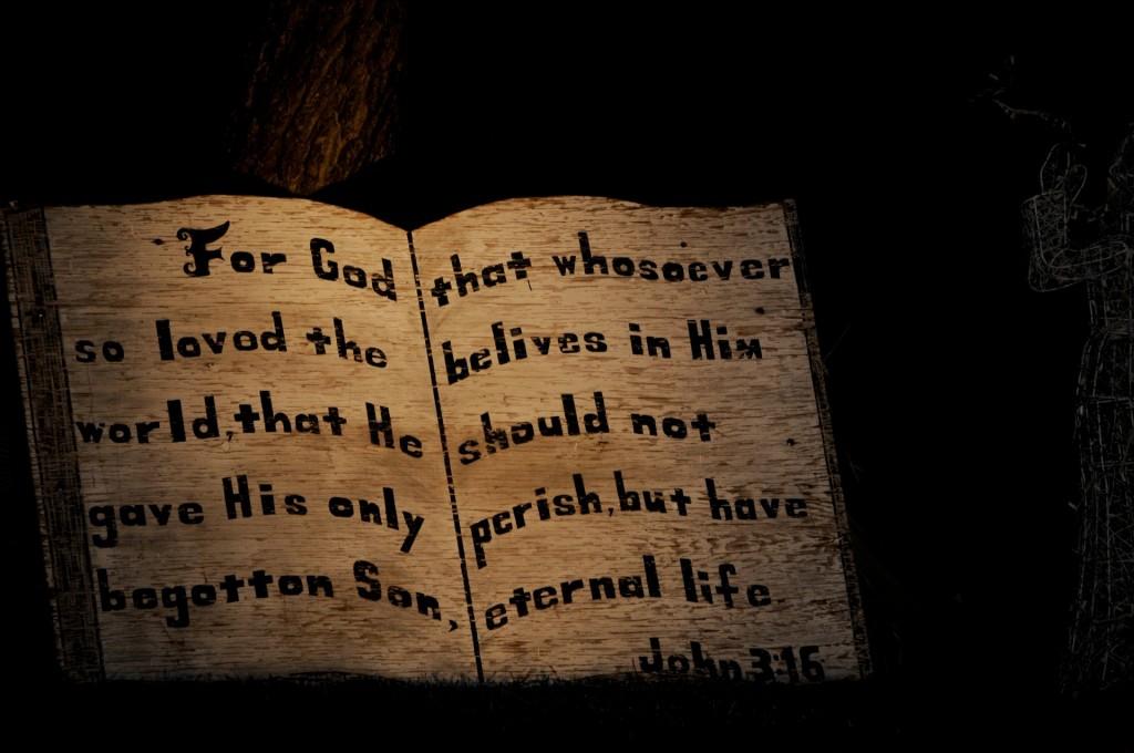 http://www.publicdomainpictures.net/view-image.php?image=105942&picture=john-316-bible-verse-decoration