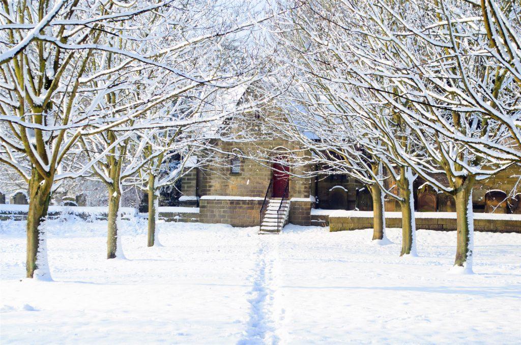 http://www.publicdomainpictures.net/view-image.php?image=31387&picture=winter